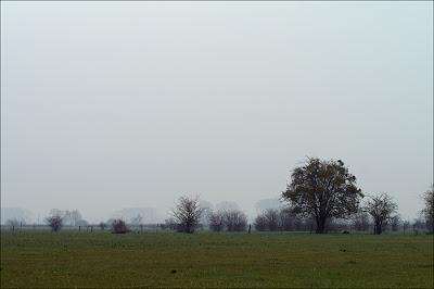 La vallée de l'Aisne