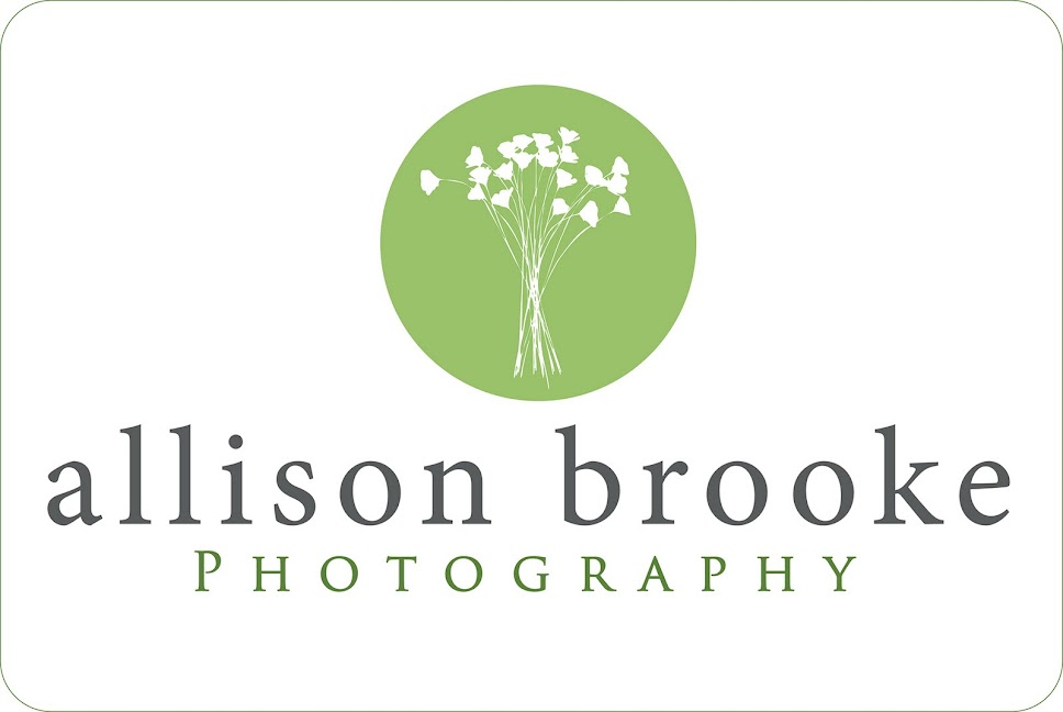 Allison Brooke Photography