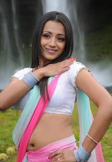 Trisha In Namo Venkatesha  Movie Stills