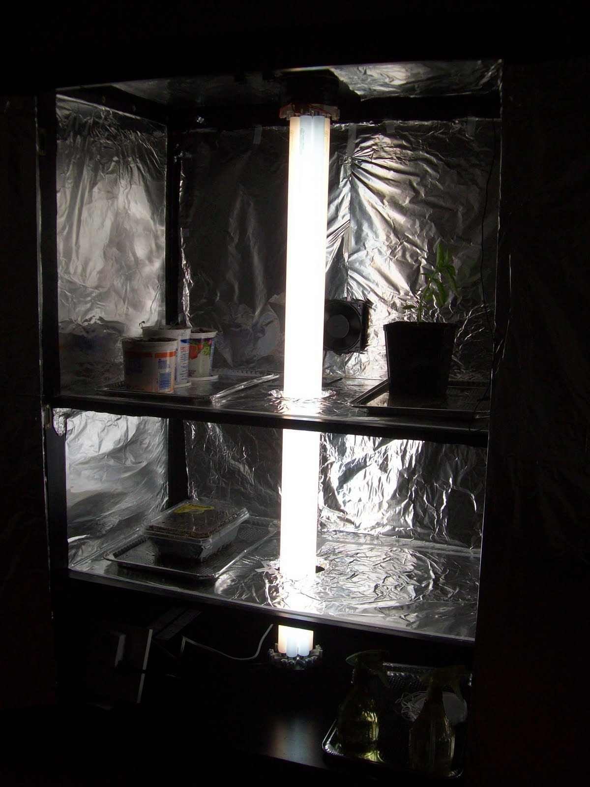 thyme to garden now the stylish indoor grow box