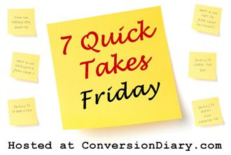 7 quick takes 7 Quick Takes Friday (vol. 45)
