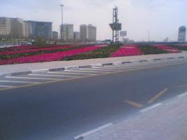 DUBAI ROADS