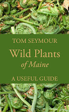 Wild Plants of Maine