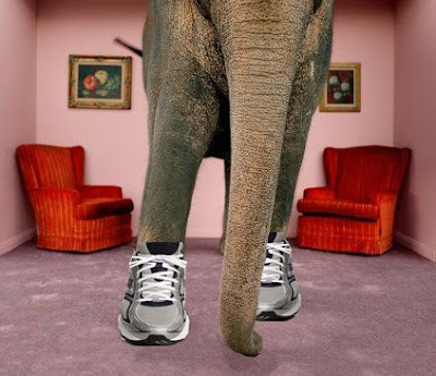 an elephant in running shoes