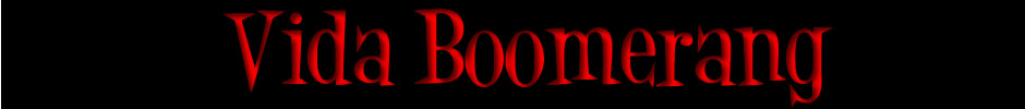 Vida Boomerang