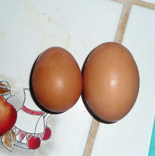 Pity the chicken that laid this!  One of Carolyn's...double yoke!