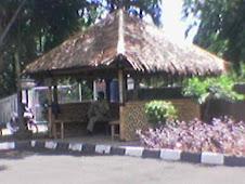 Saung Lesehan
