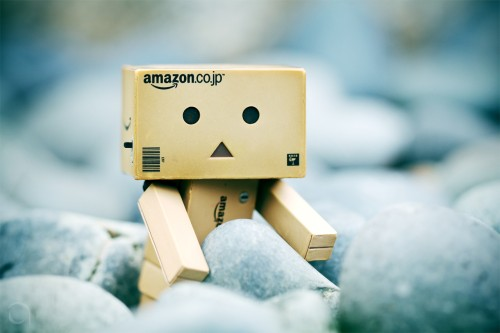Cute And Funny Danbo Pictures Anton Tang