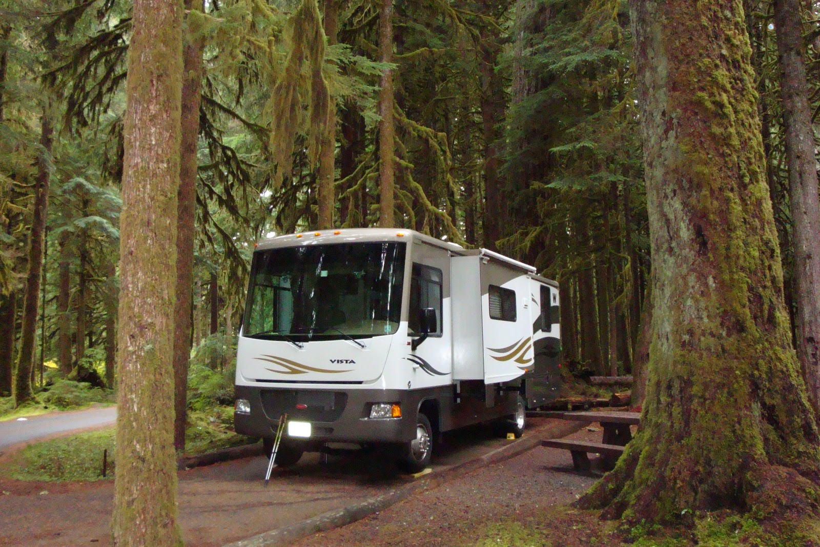 We Set Up Camp Deep In The Sol Duc Forest Olympic National Park Where Trees Are Huge I Must Mention That One Of Our Followers Did Comment On