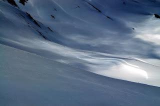 Los puntitos en la nieve son un grupo de sarrios