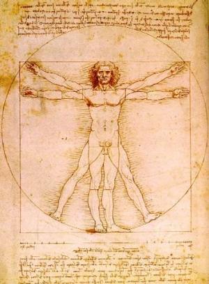atlas de anatomia en 3D