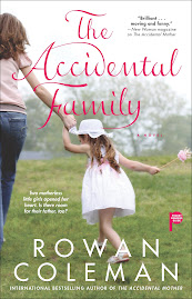 The Accidental Family U.S cover