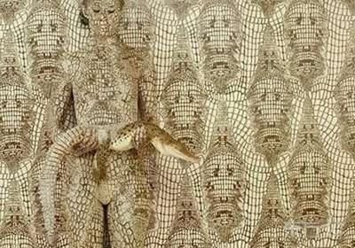 Invisible Girl Illusion