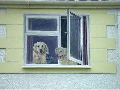 Another Realistic Dog Couple Illusion