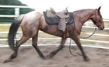Fancy Mover Under Tack!!!