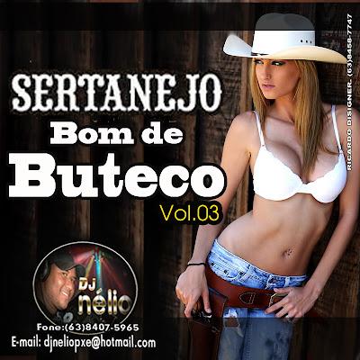 Sertanejo Bom de Buteco - Vol.03