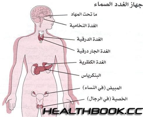 جهاز الغدد الصماء