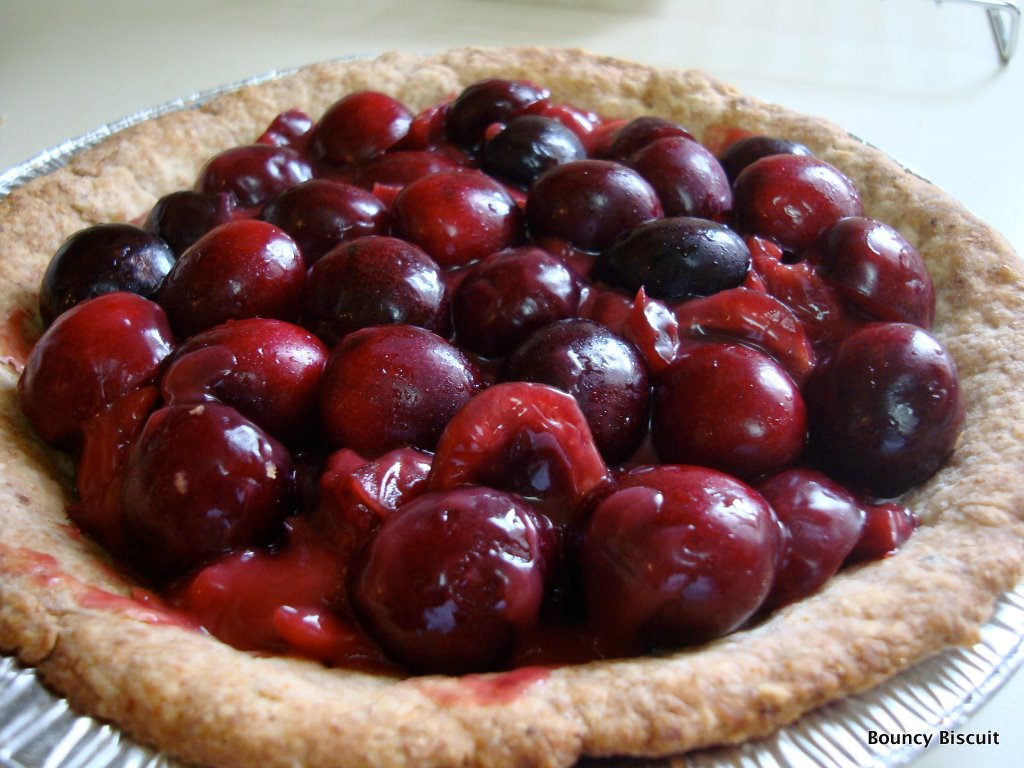 Baked Fresh Cherry Pie Recipes — Dishmaps