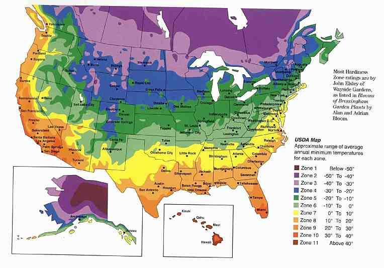 Kid life updates improptu geography lesson for Gardening zones australia