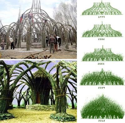 http://1.bp.blogspot.com/_F-ZiQNvmhRw/Sm3dg_K6IAI/AAAAAAAAAMQ/EpLTDZS-NZY/s400/14-sanfte-strukturen-growing-building.jpg