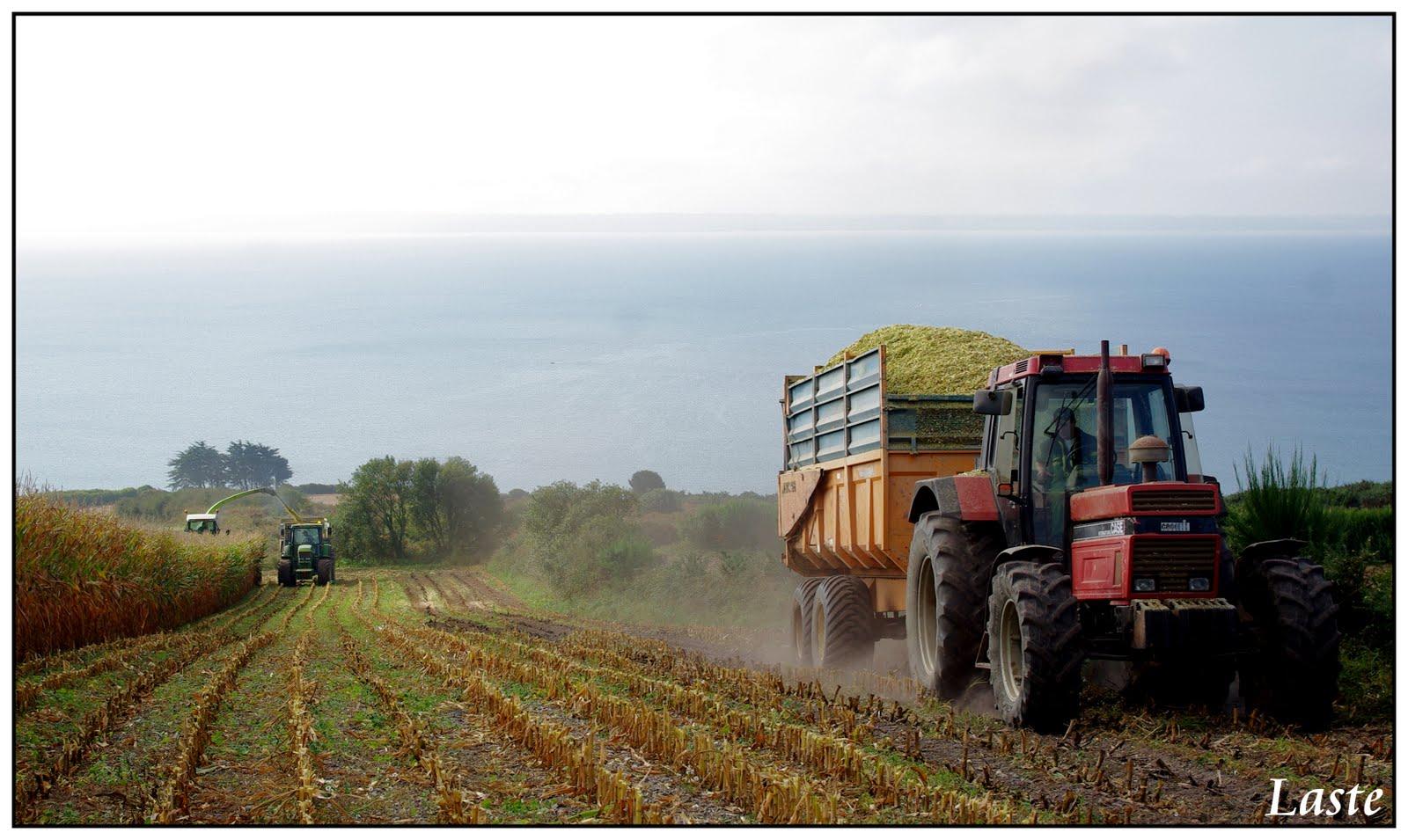 L 39 agriculture du bout du monde ensilage 2009 for L agriculture