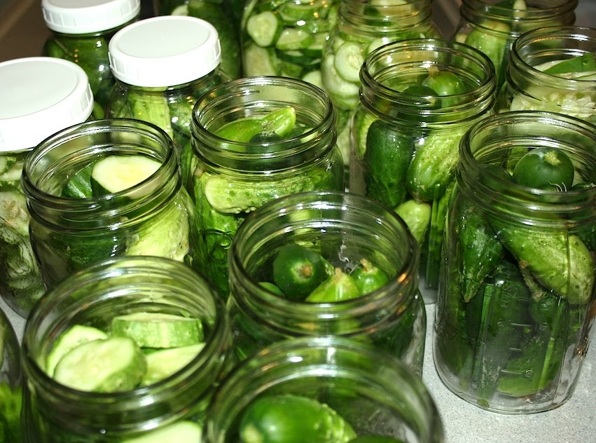 Everyday Finesse: Canning dill pickles for some very picky people