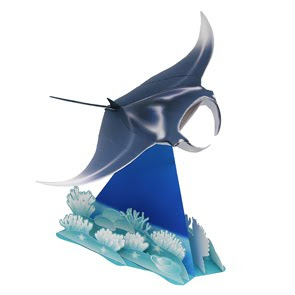 Manta Ray Cartoon Drawing Index Of