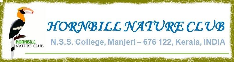Hornbill Nature Club
