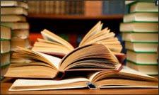 Mount Olive Library Bag o'Books Sale
