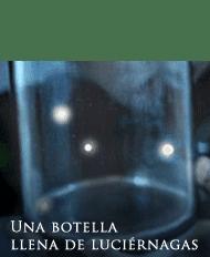 Una botella llena de luciérnagas