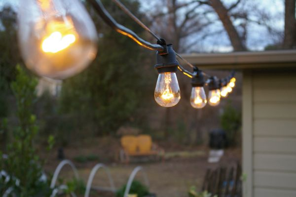 The grackle garden new string lights garden new string lights workwithnaturefo