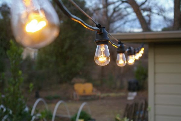The Grackle: garden: New String Lights