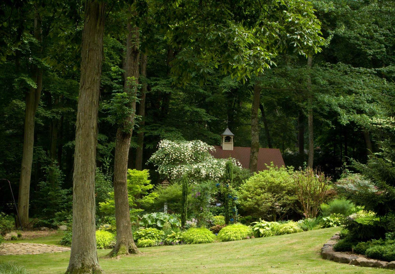 Partial shade garden ideas photograph shade garden for Part shade garden designs