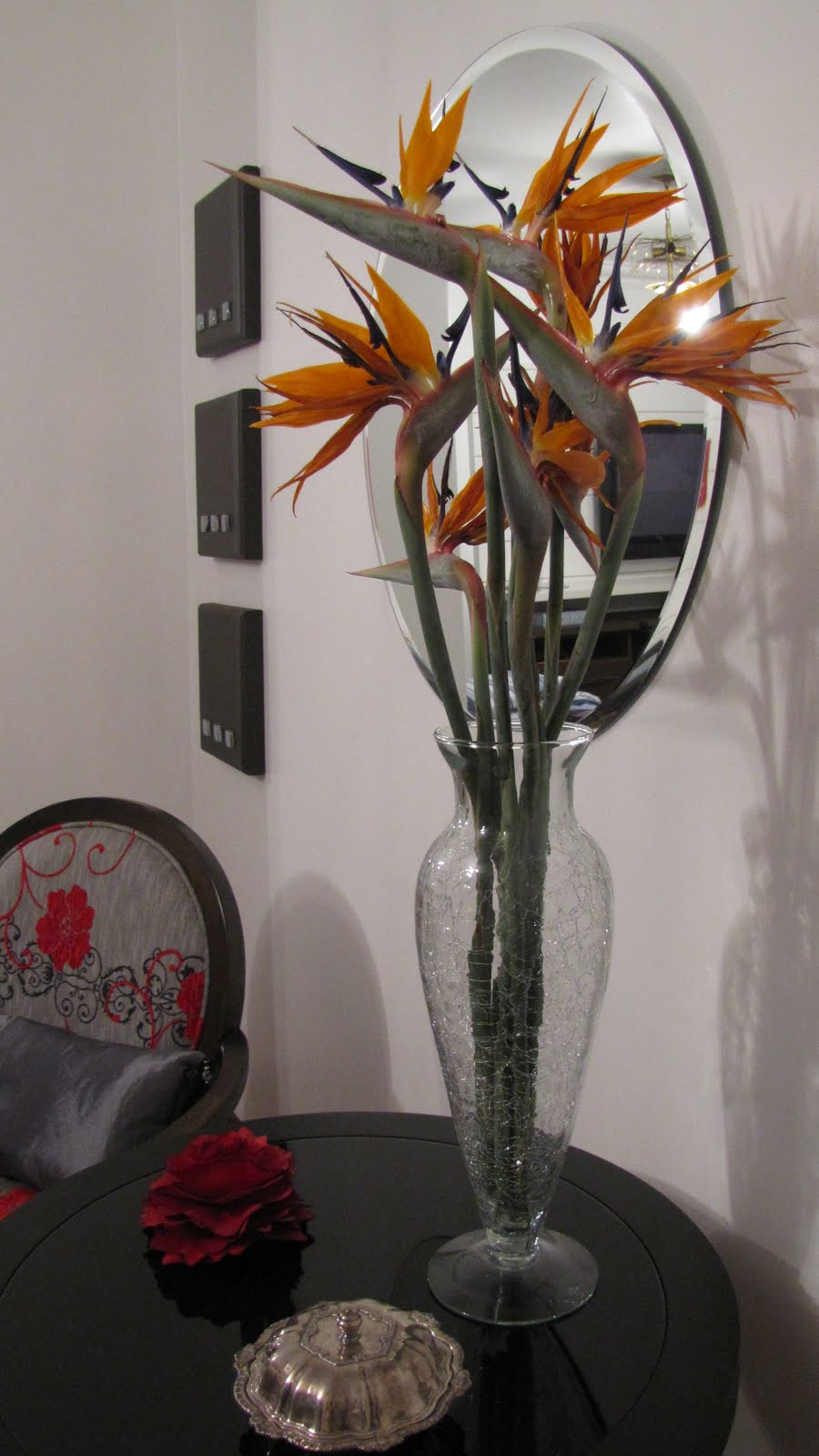 flores do meu jardim krafta