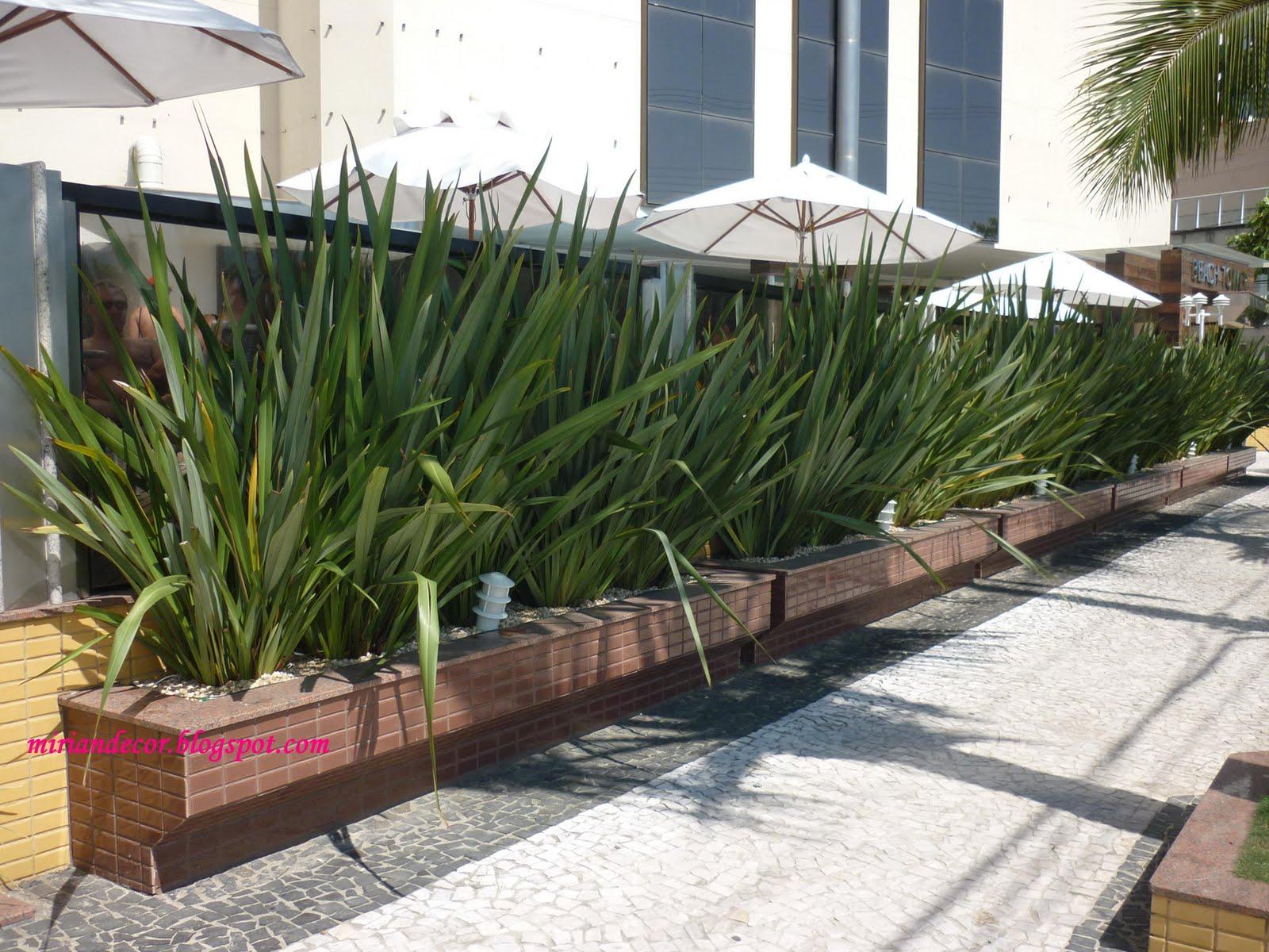 Mirian decor jardim para muros internos e de fachadas for Tipos de muros verdes