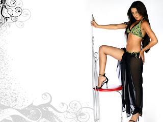 Celina Jaitley sexy legs