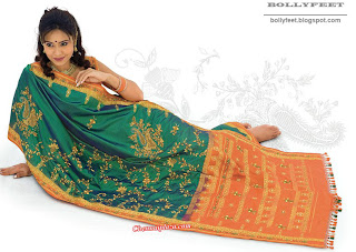 Gorgeous Indian Model in a traditional Saree