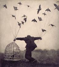 I wish to fly