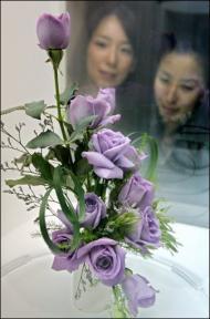 [blues+roses.jpg]