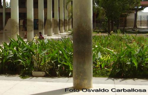 Vista de las Columnas del Salon de Actos. Sin Palabras.