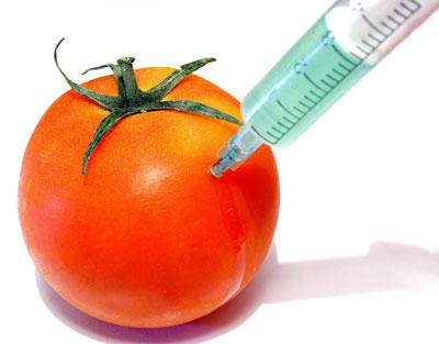 """Además de las vacunas , la Fundación Rockefeller presenta Alimentos Anti- Fertilidad GM para """" uso generalizado """"  Antifertilidad"""