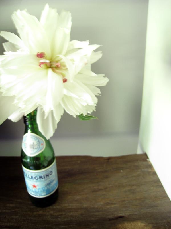 [pellegrino-flowers.jpg]