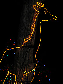 Lighted Giraffe
