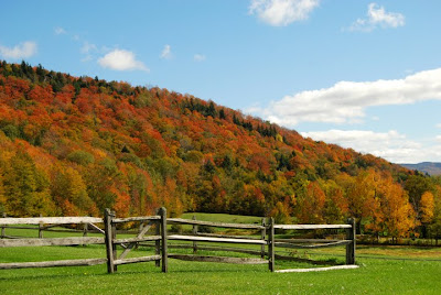 Vermont Fall Foliage