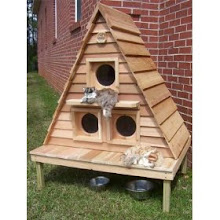 Dream Home $719