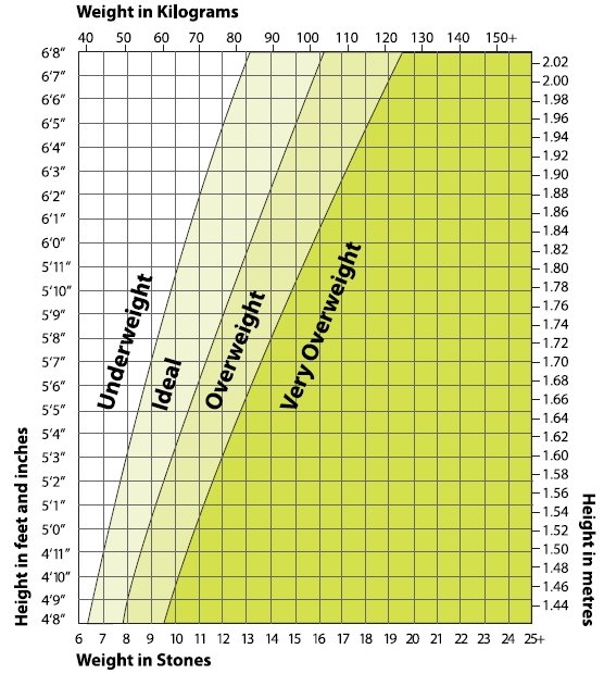 standard height and weight chart for. A height weight chart provides