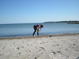 Joz,Slite strand Gotland
