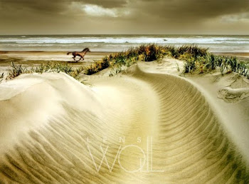 Horse and dunes - Carl Warner