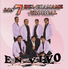 LOS 7 DEL CHAMAME