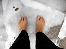 Barefoot Fresca In Snow